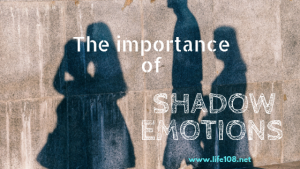 The importance of Shadow Emotions