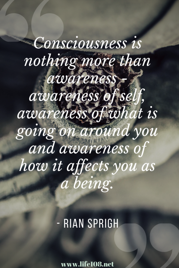 Consciousness us nothing more than awareness.