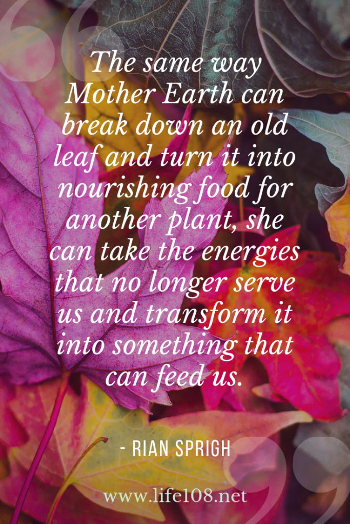 The same way she can break down an old leaf and turn it into nourishing food for another plant, she can take the energies that no longer serve us and transform it into something that can feed us.