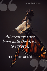 All creatures are born with the drive to survive.