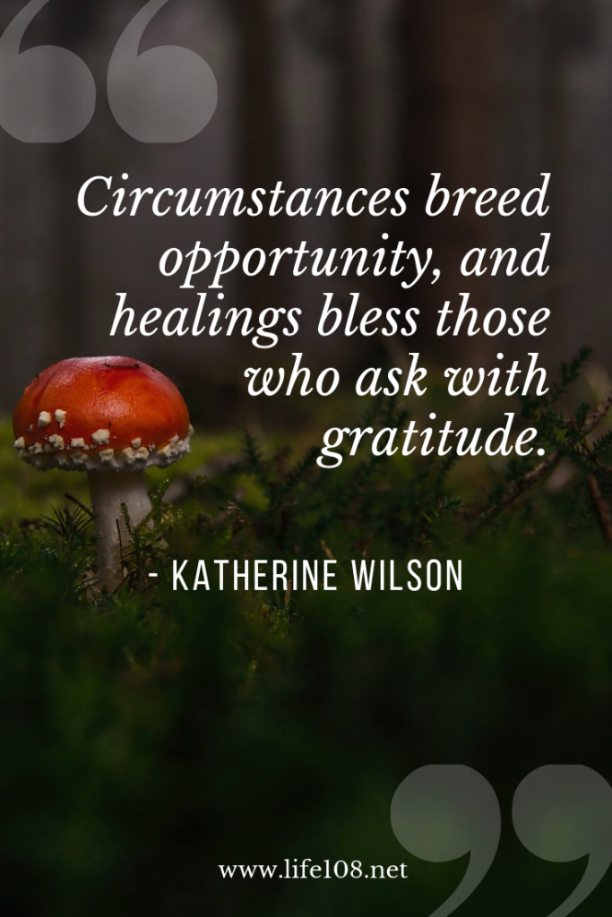 Circumstances breed opportunity, and healings bless those who ask with gratitude.