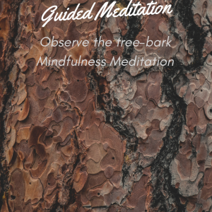 Observe the tree-bark Mindfulness Meditation