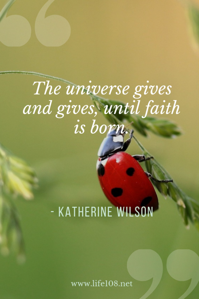 The universe gives and gives, until faith is born.