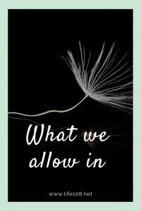 What we allow in