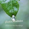 Observe the Raindrop Mindfulness meditation