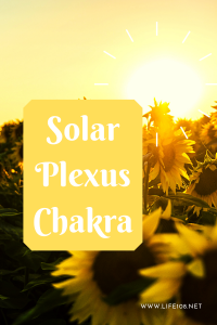 The Solar Plexus Chakra – Explained by Shakuntali Siberia.